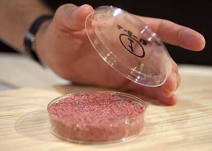 First Cell-Based Beef Showcased